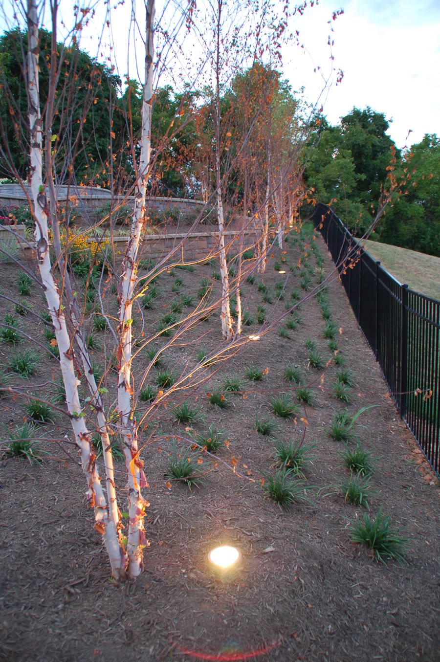 Outdoor Lighting by BR Design Build